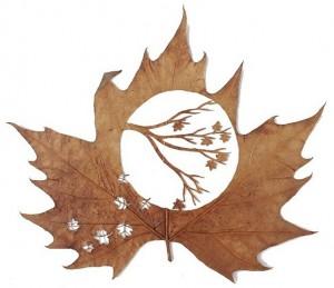 Leaf-art-by-Lorenzo-Duran13