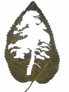 Leaf-art-by-Lorenzo-Duran6-640x853