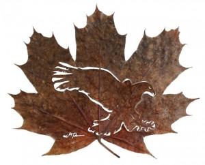 Leaf-art-by-Lorenzo-Duran9